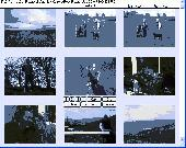 Photo Browse and Paste Screenshot