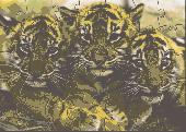 SMK Cute Tiger Cubs Puzzle Screenshot