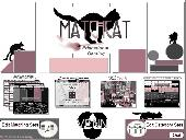 The Classroom for Learning Games: MatchCat Screenshot