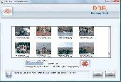 Undelete SD Memory card Screenshot