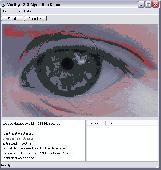 VeriEye Standard SDK Trial Screenshot